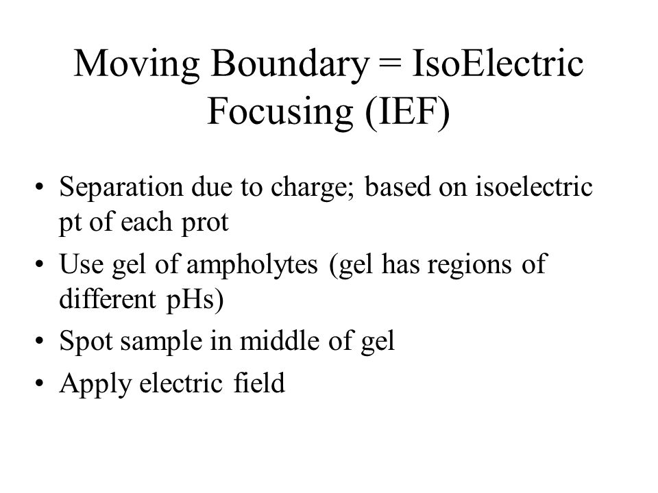 Moving Boundary = IsoElectric Focusing (IEF) Separation due to charge; based on isoelectric pt of each prot Use gel of ampholytes (gel has regions of different pHs) Spot sample in middle of gel Apply electric field