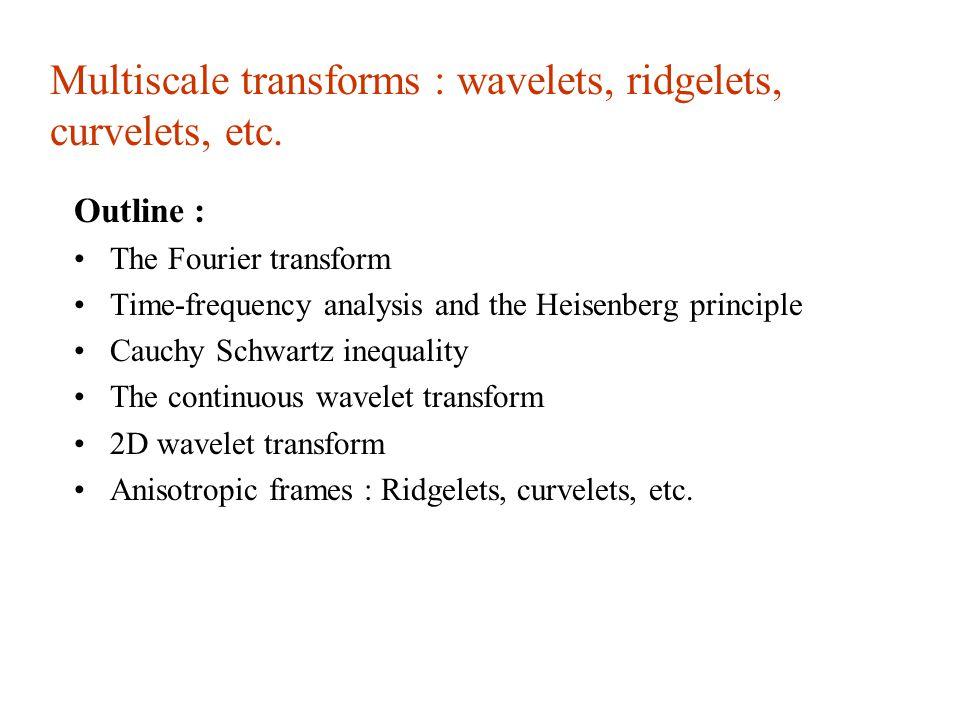 "Presentation ""Multiscale transforms : wavelets, ridgelets ..."