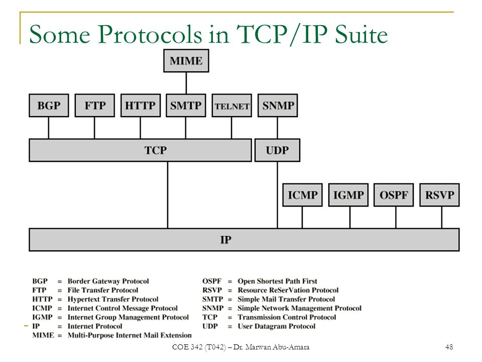 COE 342 (T042) – Dr. Marwan Abu-Amara 48 Some Protocols in TCP/IP Suite
