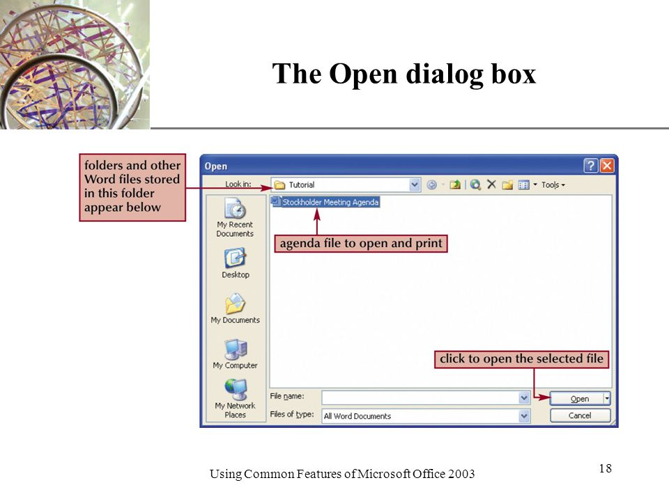 XP Using Common Features of Microsoft Office The Open dialog box