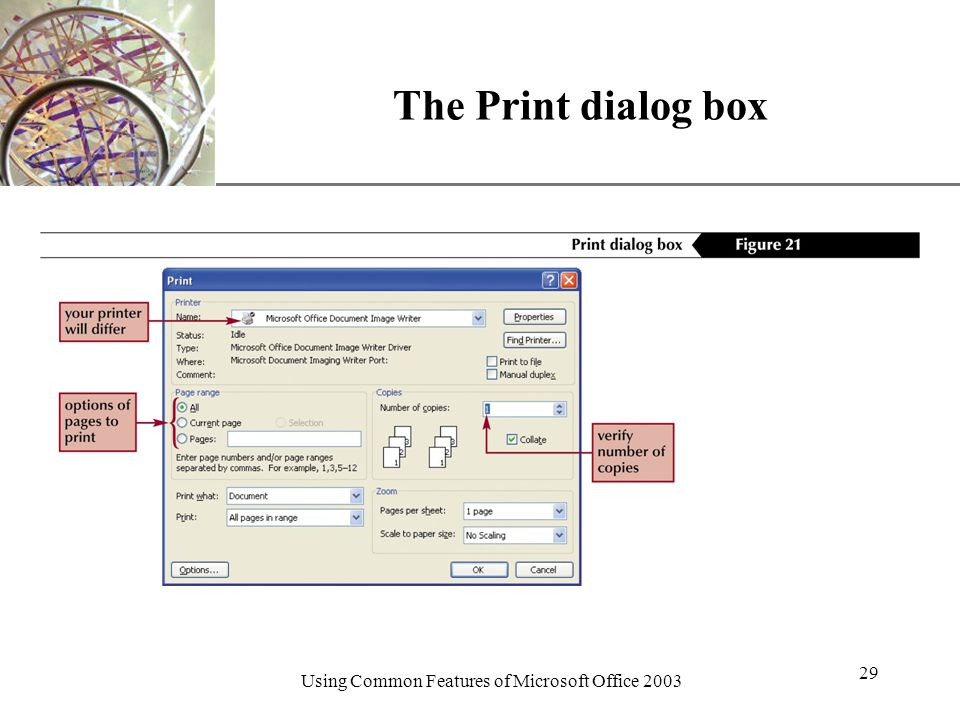 XP Using Common Features of Microsoft Office The Print dialog box