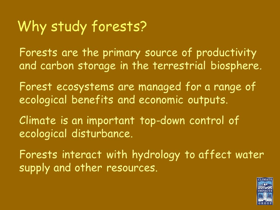 Why study forests.