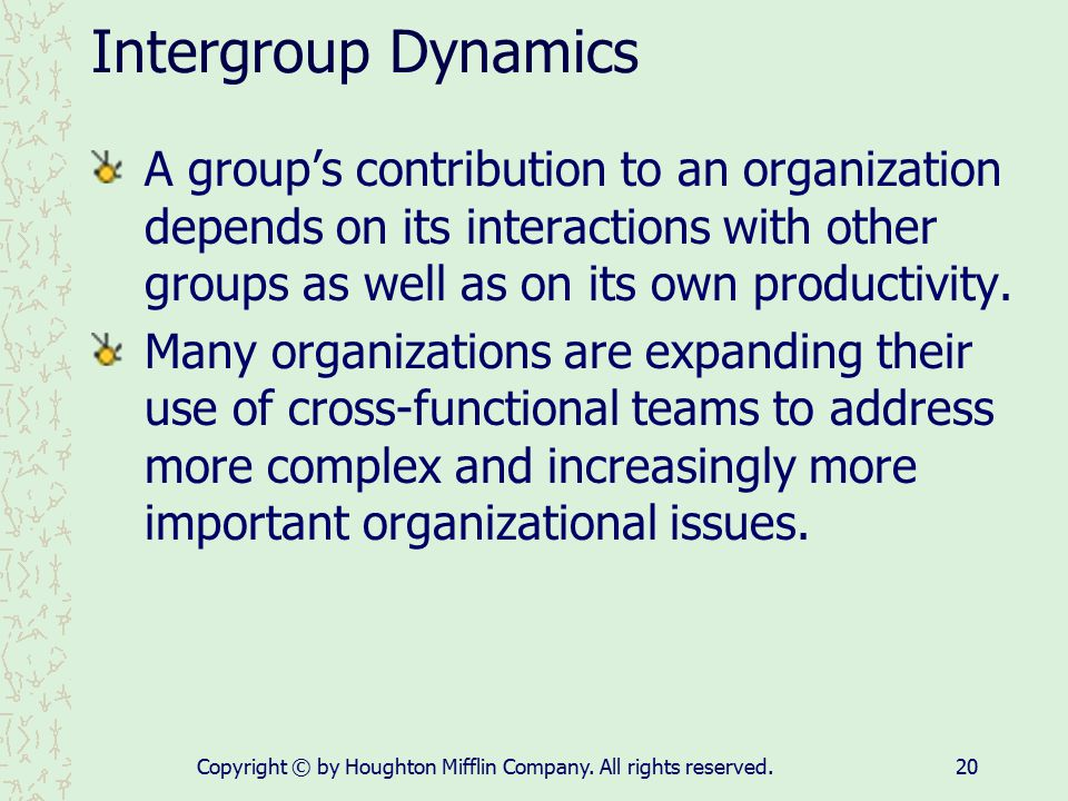 Copyright © by Houghton Mifflin Company. All rights reserved.20 Intergroup Dynamics A group's contribution to an organization depends on its interacti