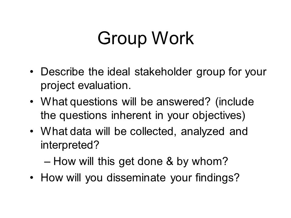 Group Work Describe the ideal stakeholder group for your project evaluation.