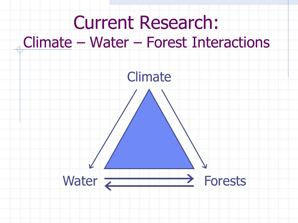 Current Research: Climate – Water – Forest Interactions Climate WaterForests