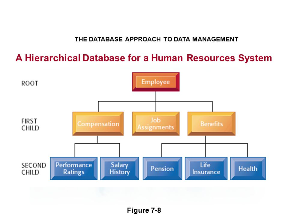 A Hierarchical Database for a Human Resources System THE DATABASE APPROACH TO DATA MANAGEMENT Figure 7-8