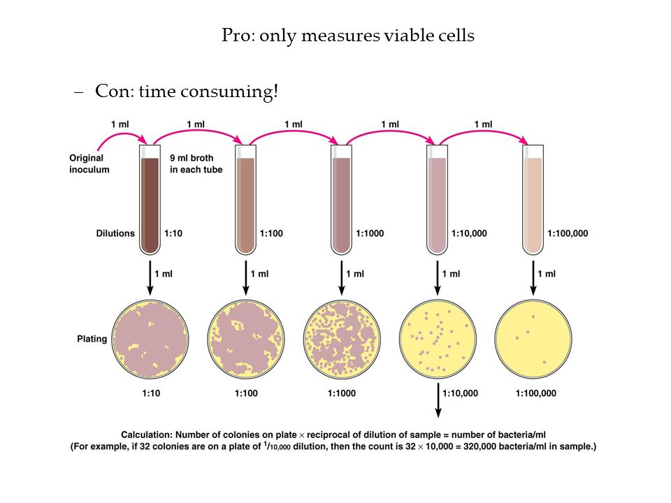 Pro: only measures viable cells –Con: time consuming!