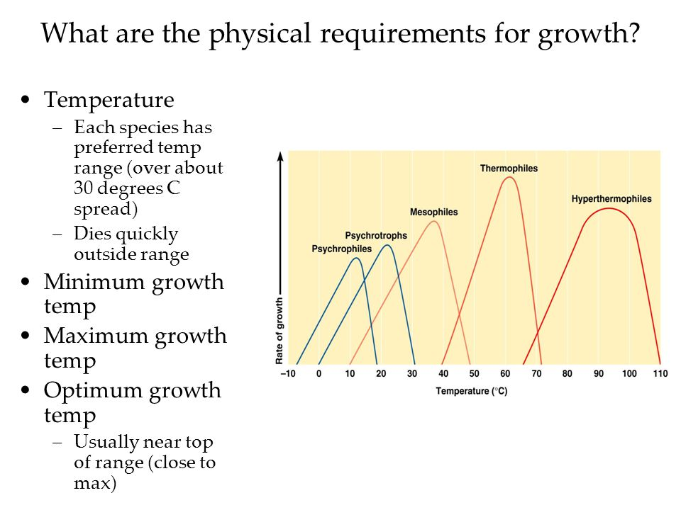 What are the physical requirements for growth.