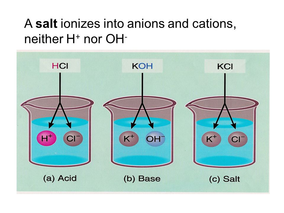 A salt ionizes into anions and cations, neither H + nor OH -