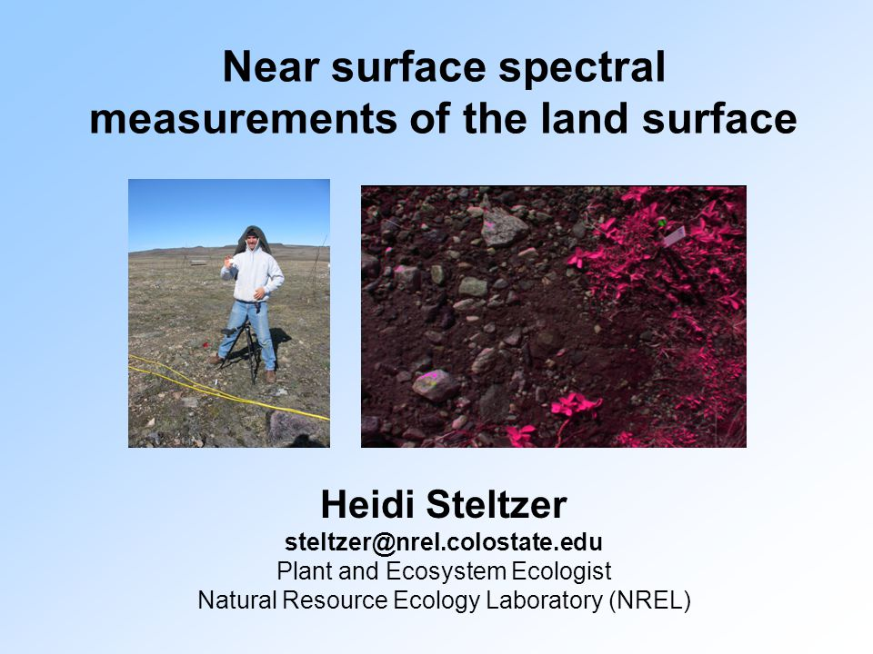 Near surface spectral measurements of the land surface Heidi Steltzer Plant and Ecosystem Ecologist Natural Resource Ecology Laboratory (NREL)