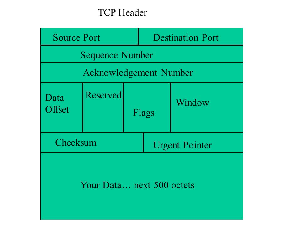 Source PortDestination Port Sequence Number Acknowledgement Number Data Offset Reserved Flags Window Checksum Urgent Pointer Your Data… next 500 octets TCP Header