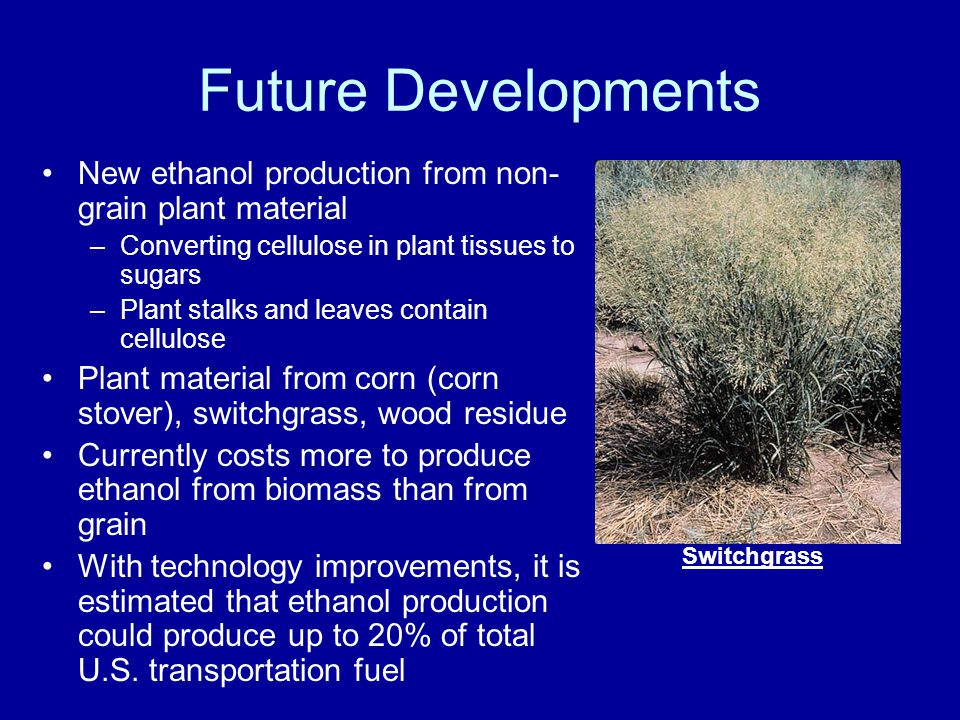 Future Developments New ethanol production from non- grain plant material –Converting cellulose in plant tissues to sugars –Plant stalks and leaves contain cellulose Plant material from corn (corn stover), switchgrass, wood residue Currently costs more to produce ethanol from biomass than from grain With technology improvements, it is estimated that ethanol production could produce up to 20% of total U.S.