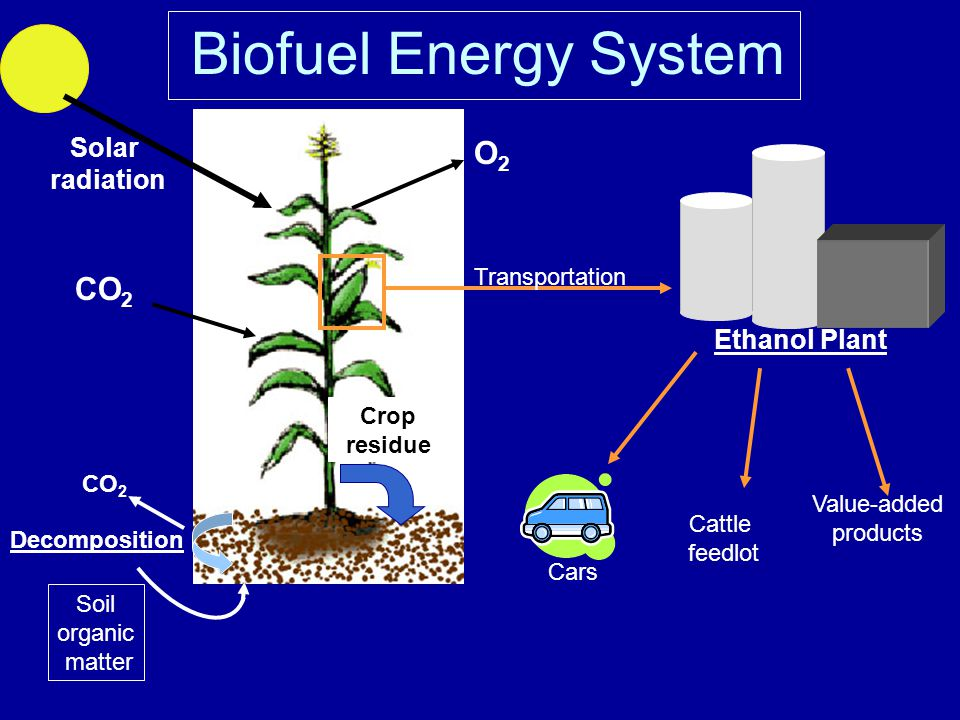 Biofuel Energy System Solar radiation CO 2 O2O2 Decomposition Crop residue Soil organic matter CO 2 Ethanol Plant Transportation Cars Cattle feedlot Value-added products