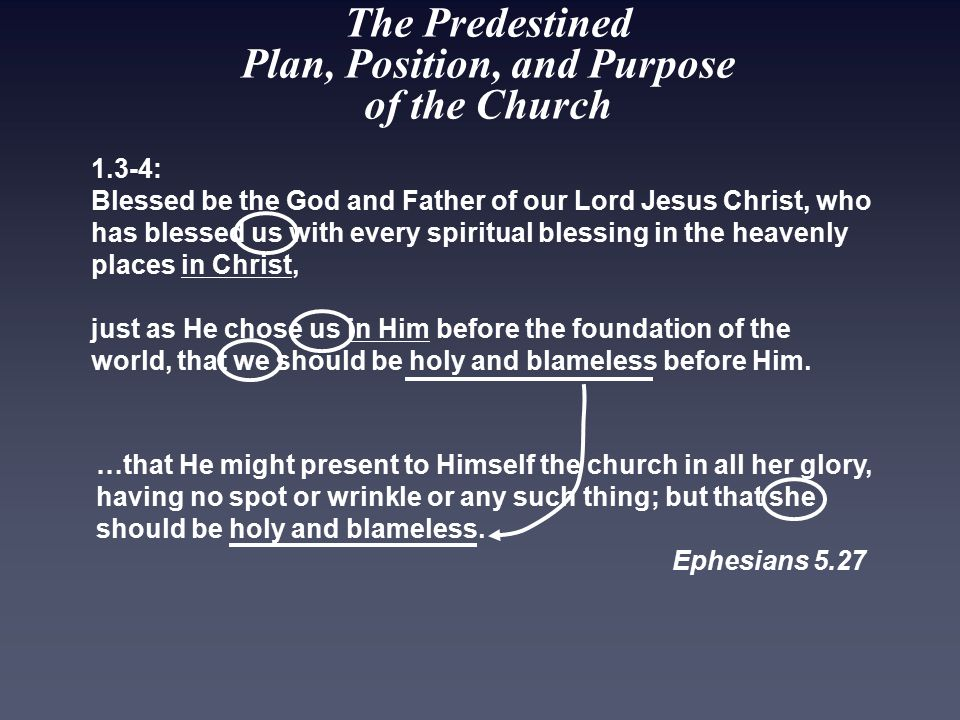 The Predestined Plan, Position, and Purpose of the Church 1.3-4: Blessed be the God and Father of our Lord Jesus Christ, who has blessed us with every spiritual blessing in the heavenly places in Christ, just as He chose us in Him before the foundation of the world, that we should be holy and blameless before Him.