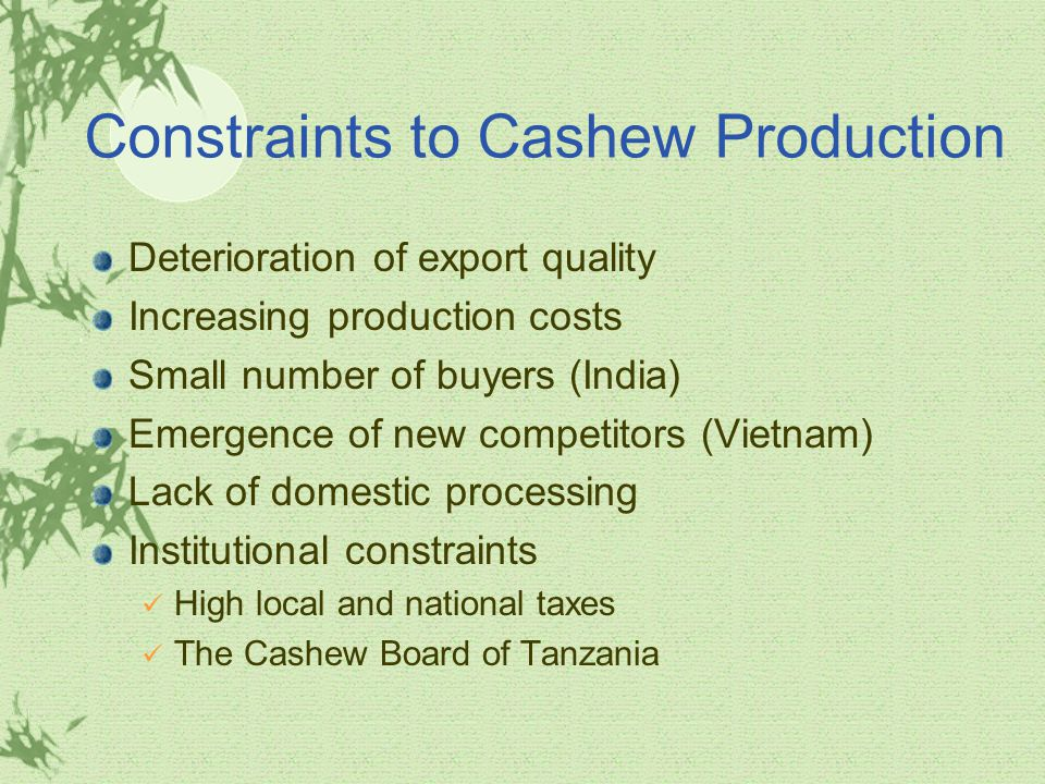 Constraints to Cashew Production Deterioration of export quality Increasing production costs Small number of buyers (India) Emergence of new competitors (Vietnam) Lack of domestic processing Institutional constraints High local and national taxes The Cashew Board of Tanzania