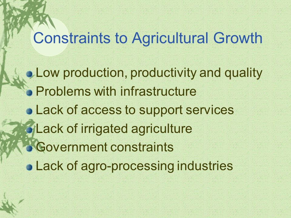 Constraints to Agricultural Growth Low production, productivity and quality Problems with infrastructure Lack of access to support services Lack of irrigated agriculture Government constraints Lack of agro-processing industries