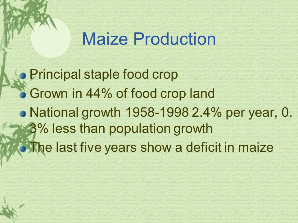 Maize Production Principal staple food crop Grown in 44% of food crop land National growth % per year, 0.