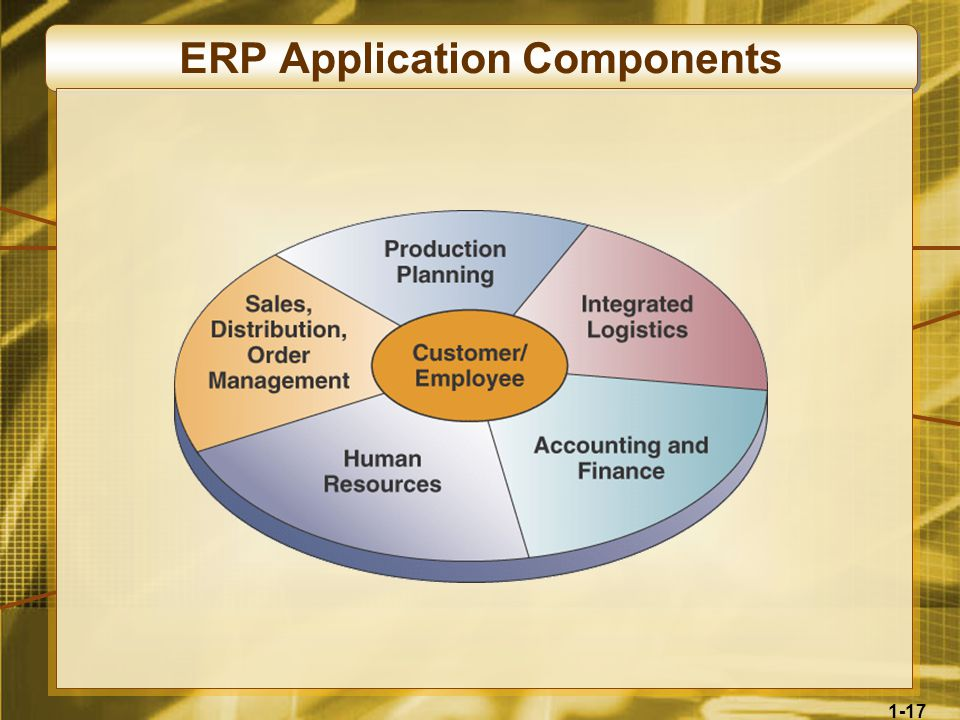 1-17 ERP Application Components
