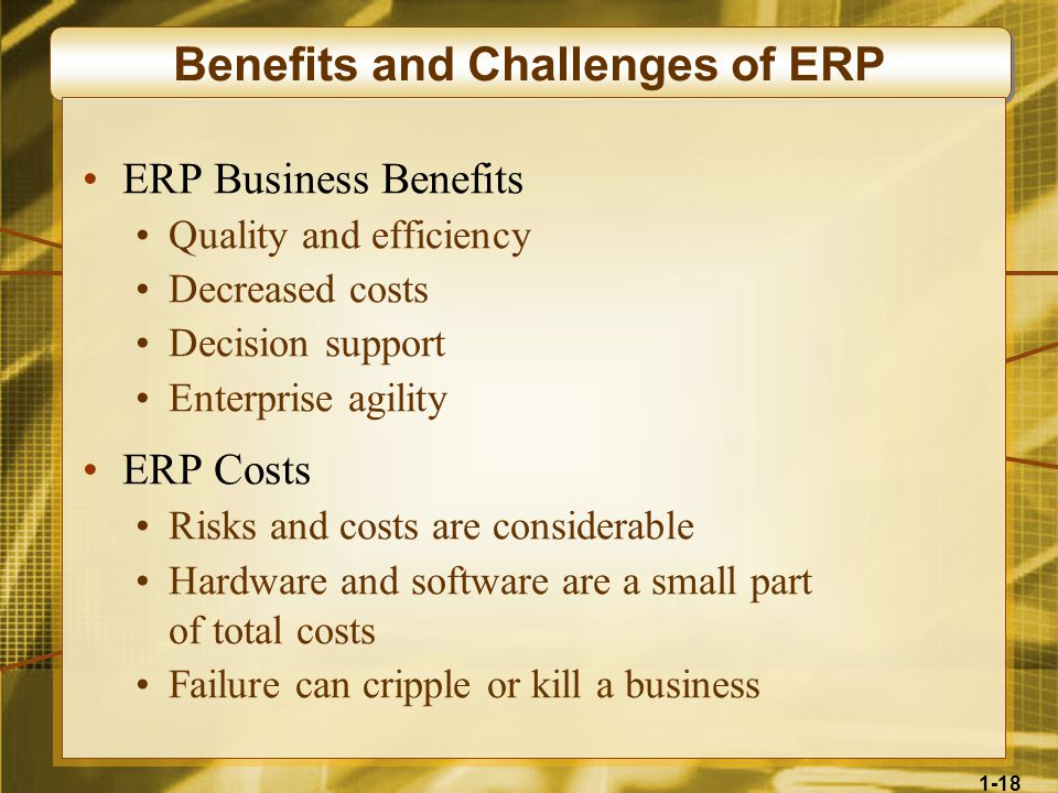 1-18 Benefits and Challenges of ERP ERP Business Benefits Quality and efficiency Decreased costs Decision support Enterprise agility ERP Costs Risks and costs are considerable Hardware and software are a small part of total costs Failure can cripple or kill a business