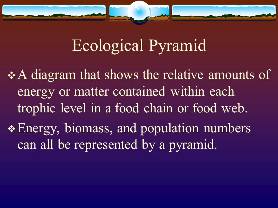 Trophic Levels  Each step in a food chain or food web  1 st level = producers  2 nd, 3 rd, or higher levels = consumers  Usually no more than 5 levels because 90% of energy is lost at each level.