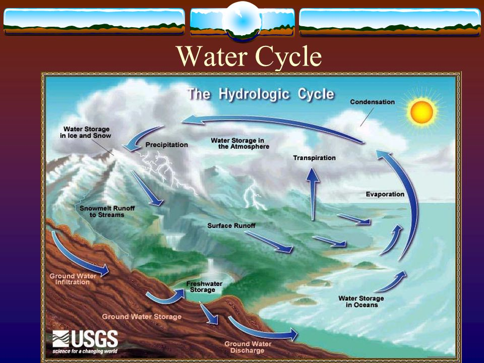 Cycles of Matter  Recycling in the Biosphere  Matter is recycled within and between ecosystems.