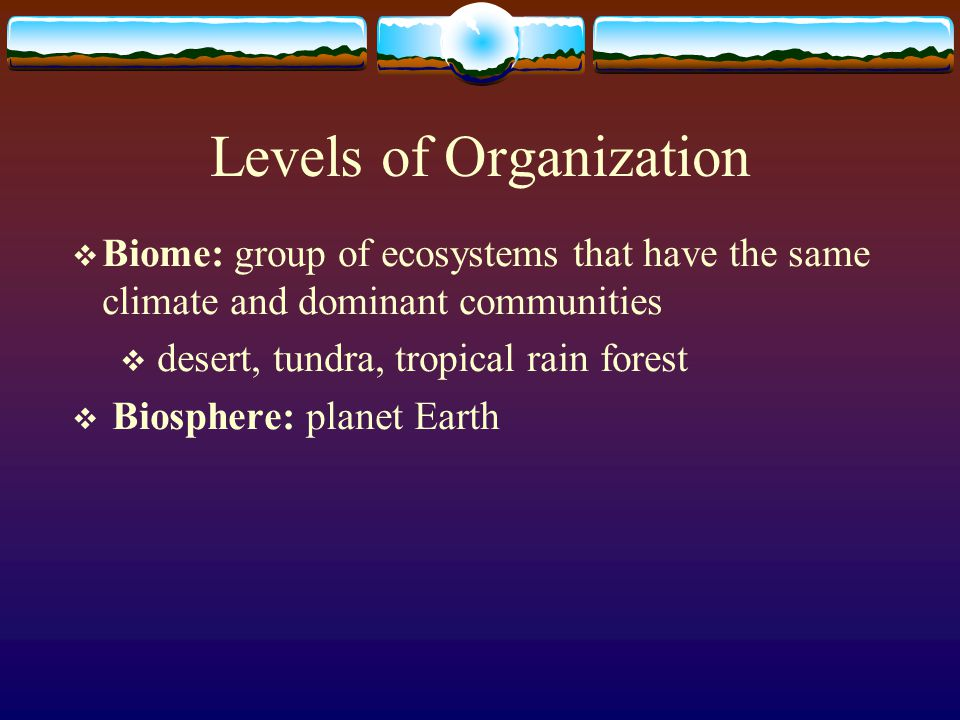 Levels of Organization  Communities: different populations that live together in a defined area  rabbits, coyotes, ravens, lizard  Ecosystem: collection of all the organisms that live in a particular place, together with their nonliving, or physical, environment  rabbits, coyotes, ravens, lizard, rocks, dirt, climate, water