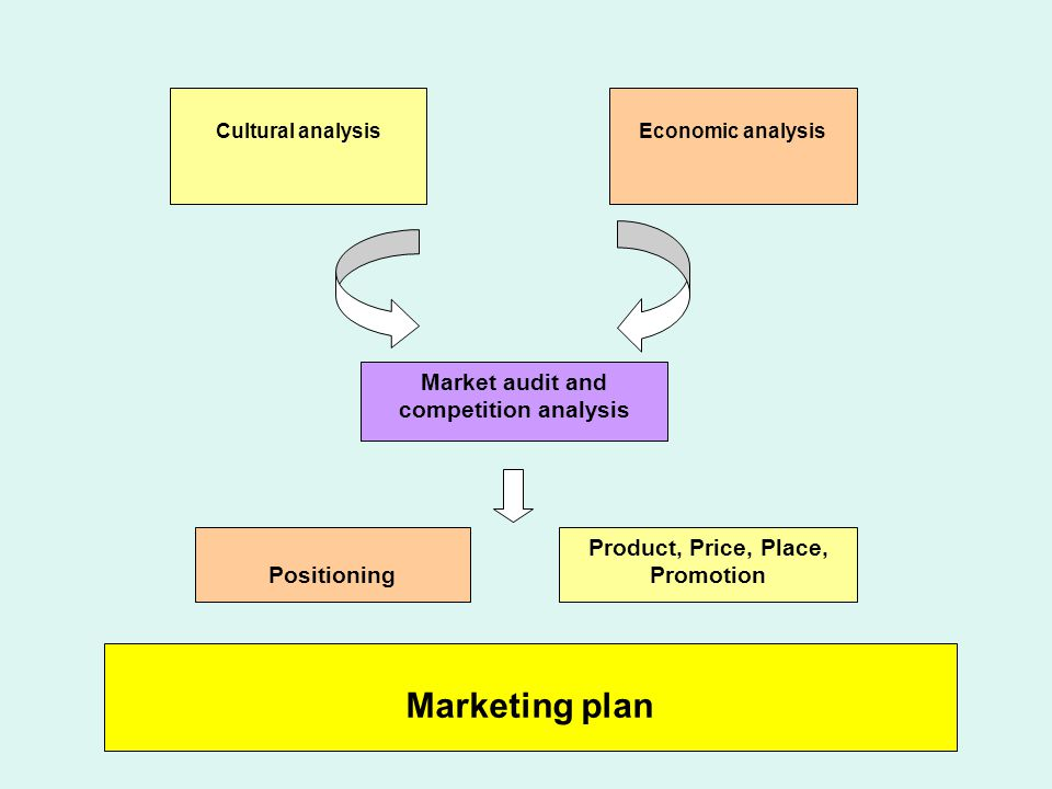 Cultural analysisEconomic analysis Market audit and competition analysis Positioning Product, Price, Place, Promotion Marketing plan