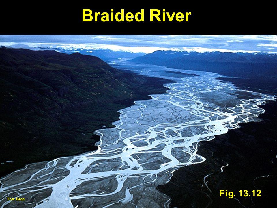 Fig. 13.12 Braided River Tom Bean