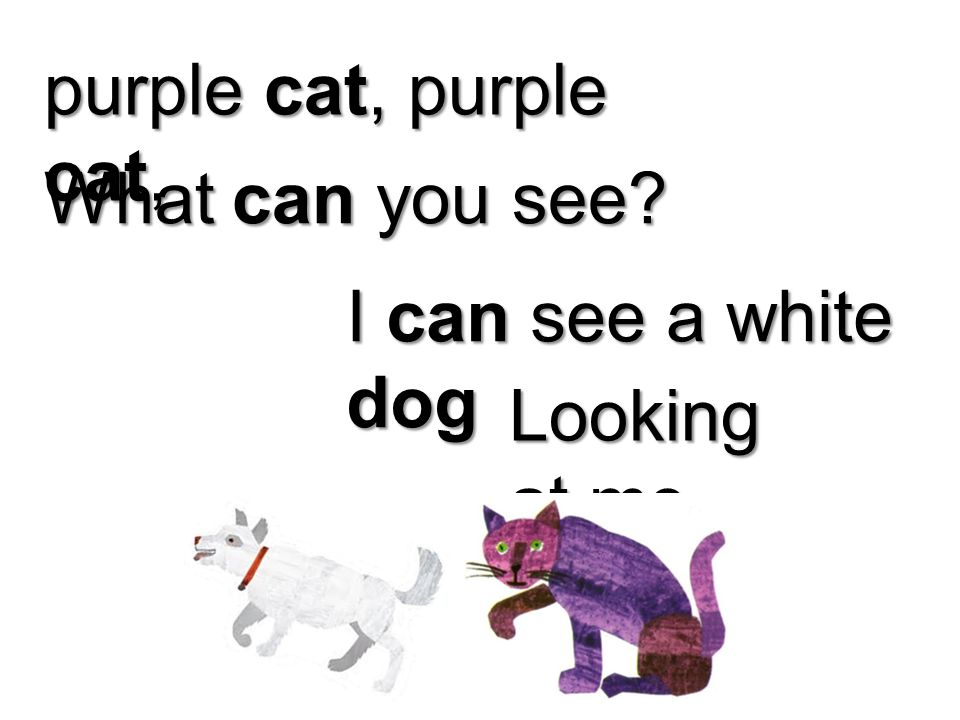 purple cat, purple cat, What can you see I can see a white dog Looking at me
