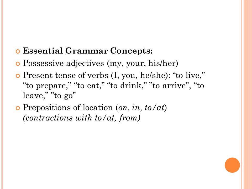 Worksheets Possessive Adjectives Spanish Worksheet Chicochino – Spanish Possessive Adjectives Worksheet