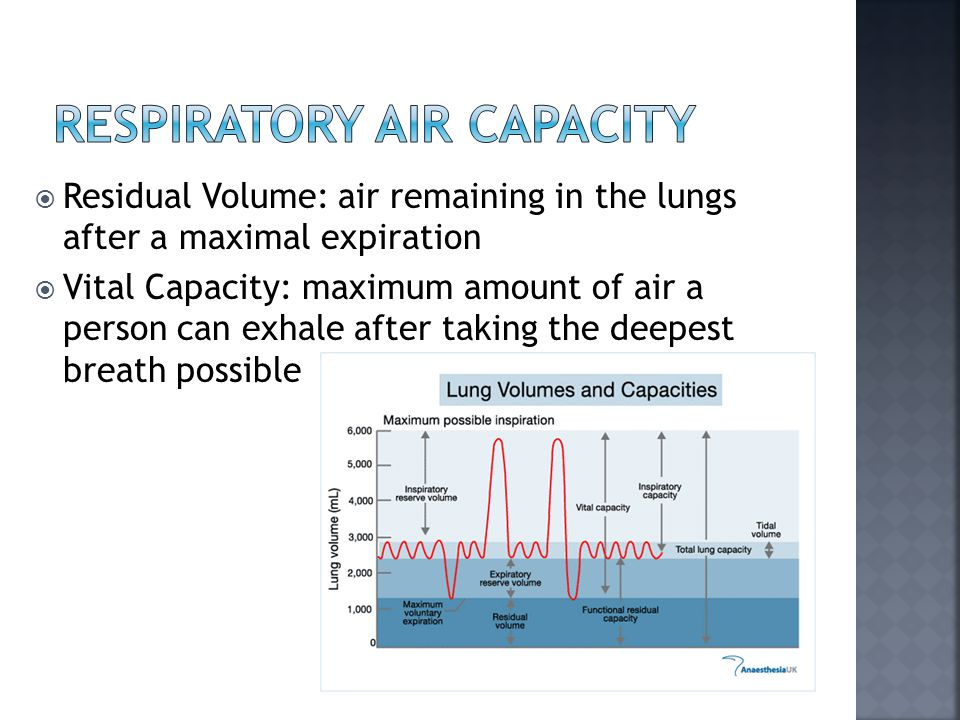  Residual Volume: air remaining in the lungs after a maximal expiration  Vital Capacity: maximum amount of air a person can exhale after taking the deepest breath possible