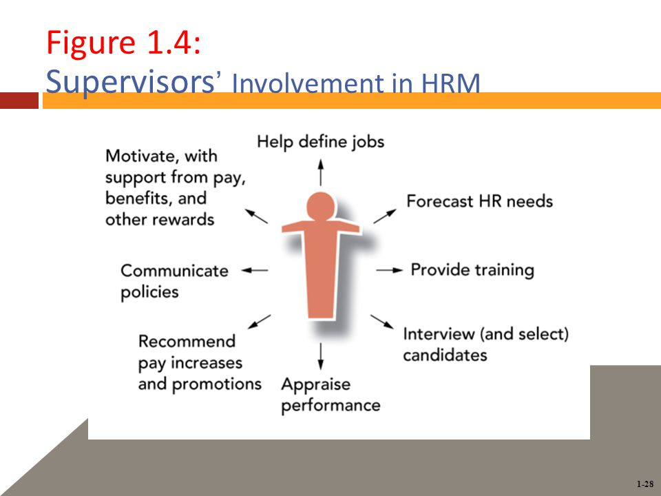 1-28 Figure 1.4: Supervisors ' Involvement in HRM