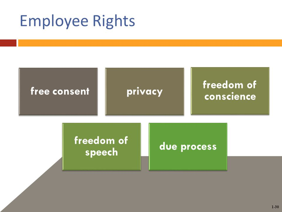 1-30 Employee Rights free consentprivacy freedom of conscience freedom of speech due process