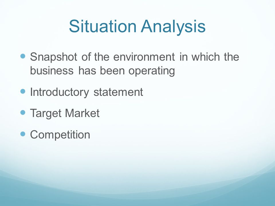 Situation Analysis Snapshot of the environment in which the business has been operating Introductory statement Target Market Competition