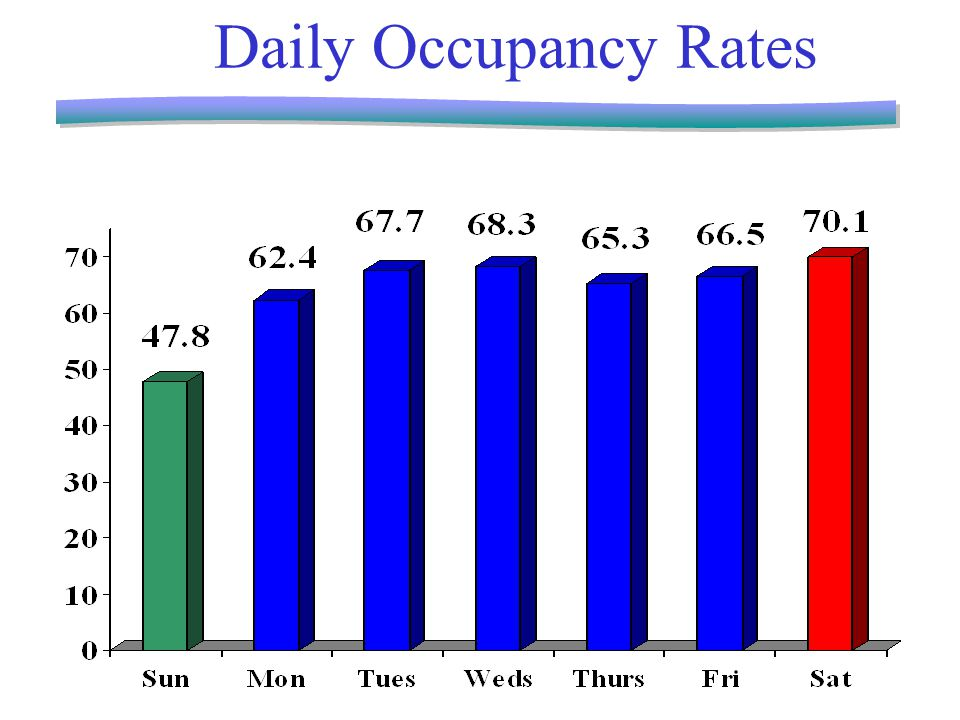 Daily Occupancy Rates