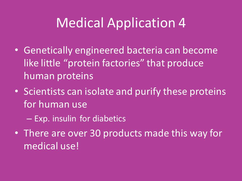 Medical Application 4 Genetically engineered bacteria can become like little protein factories that produce human proteins Scientists can isolate and purify these proteins for human use – Exp.