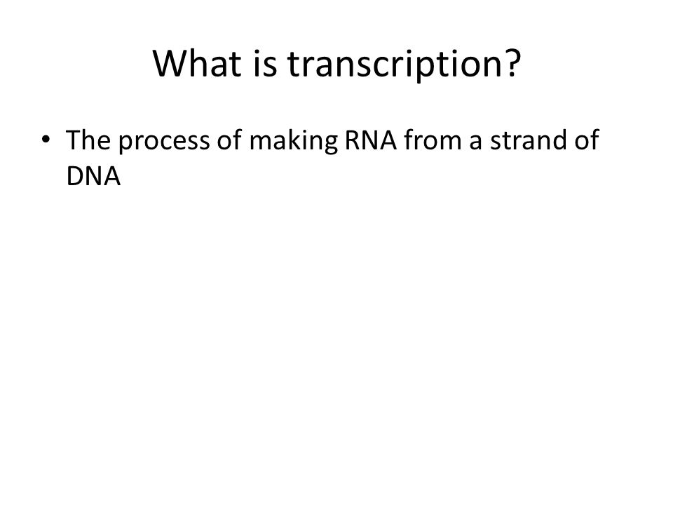 What is transcription The process of making RNA from a strand of DNA