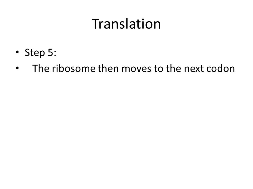 Translation Step 5: The ribosome then moves to the next codon