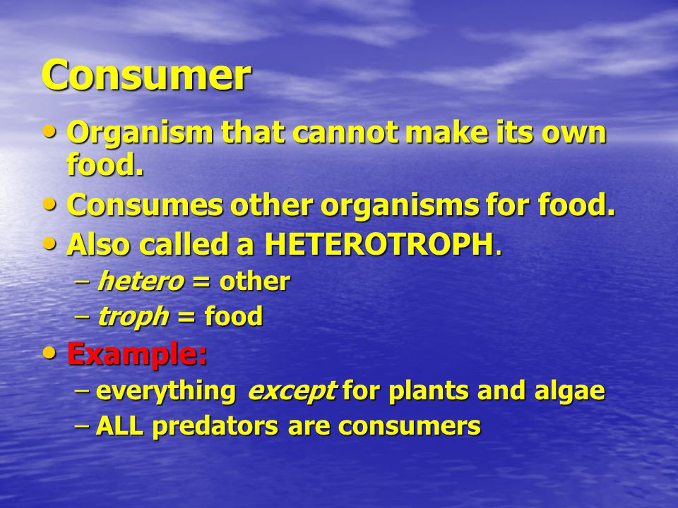 Consumer Organism that cannot make its own food. Organism that cannot make its own food.