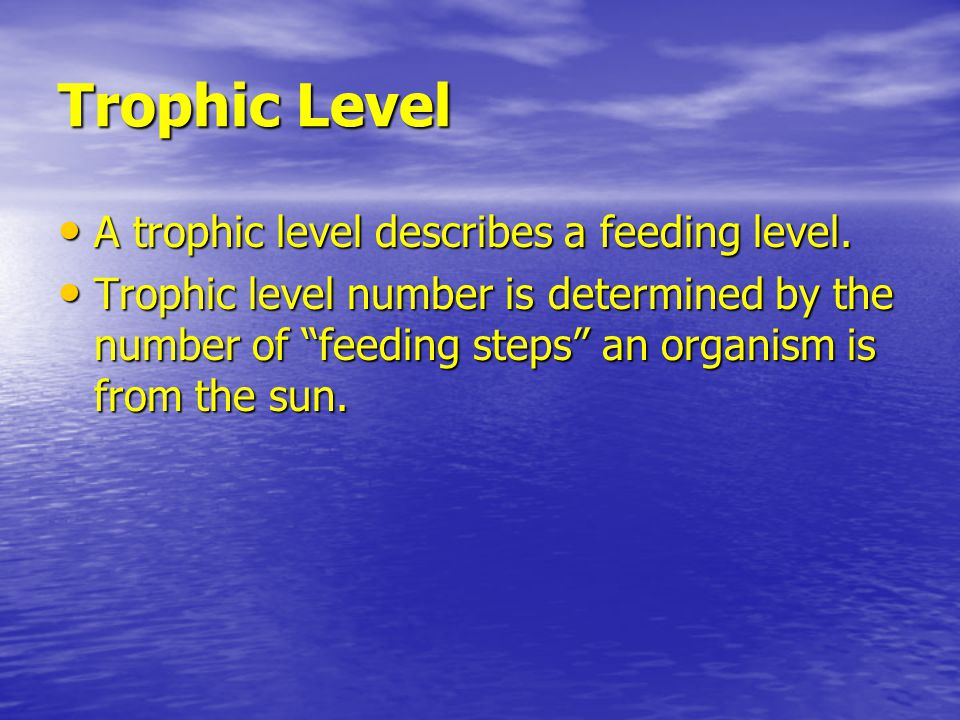 Trophic Level A trophic level describes a feeding level.