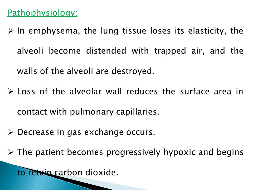 Pathophysiology:  In emphysema, the lung tissue loses its elasticity, the alveoli become distended with trapped air, and the walls of the alveoli are destroyed.