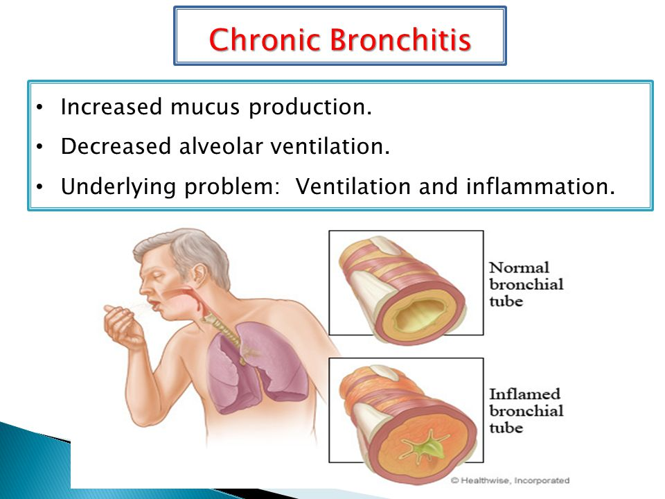 Chronic Bronchitis Increased mucus production. Decreased alveolar ventilation.