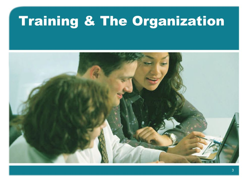 3 Training & The Organization