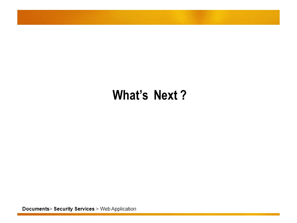 Documents> Security Services > Web Application What's Next