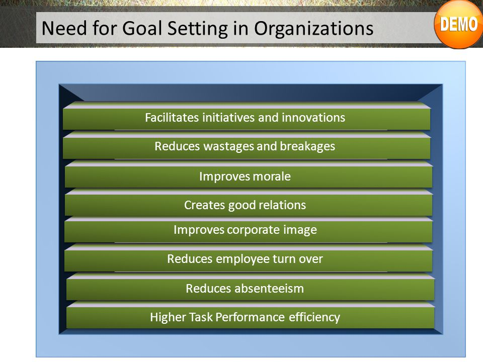 Need for Goal Setting in Organizations