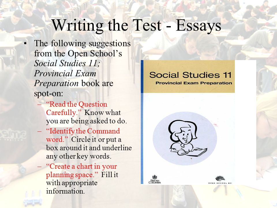 Process Of Essay Writing