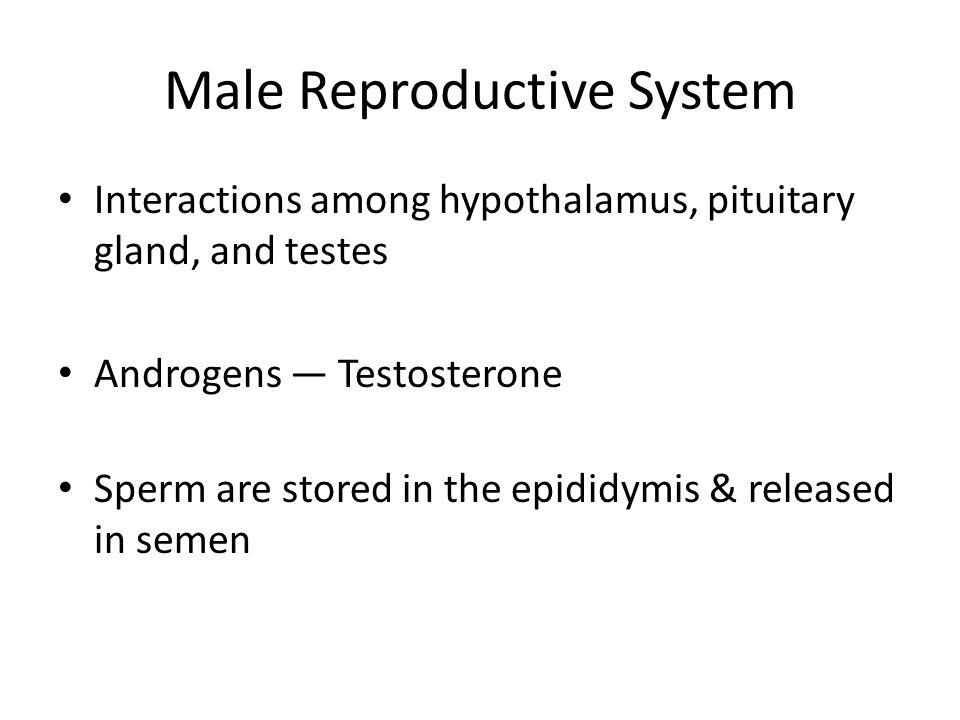 alesse low dose birth control