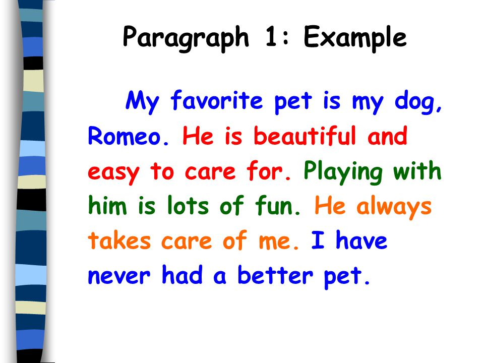 Easy essay on my pet dog
