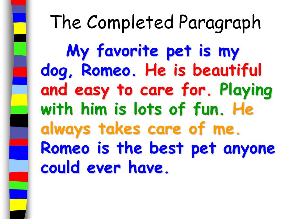 Essay On My Pet Dog In Hindi - w3sitesinfocom