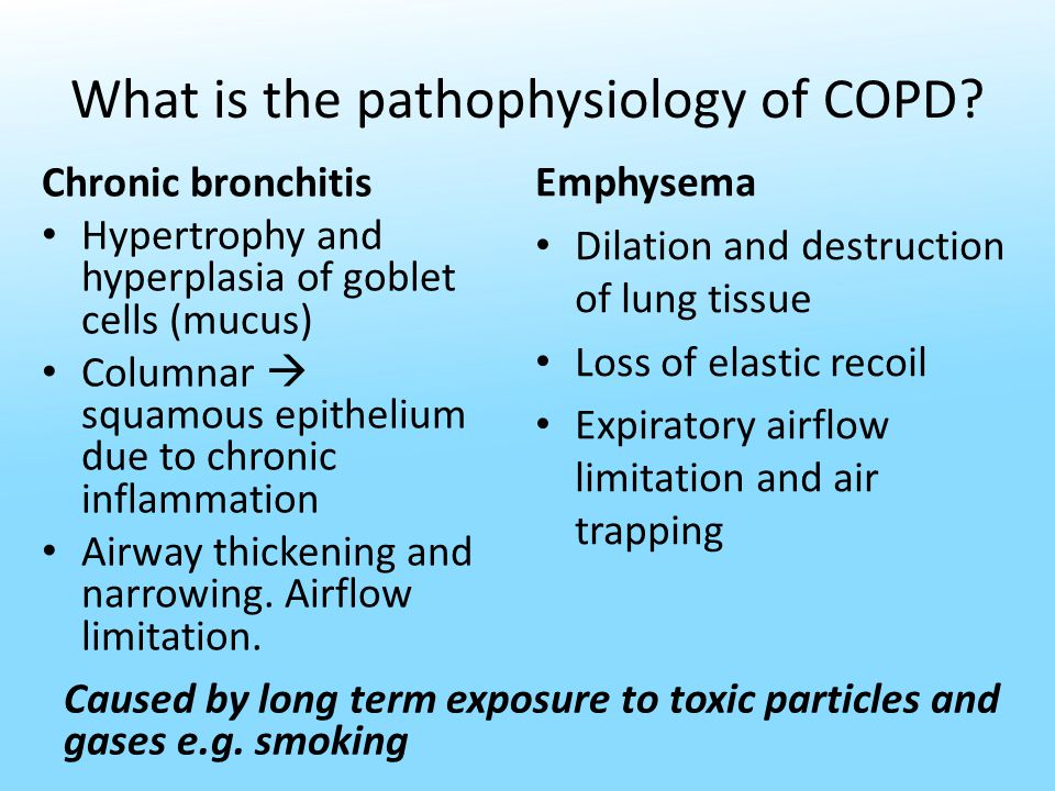 What is the pathophysiology of COPD.